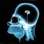 Hommer's Brain